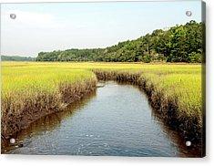 South Carolina Salt Marsh Acrylic Print