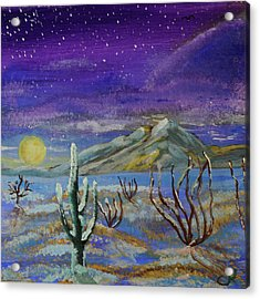 Southern Arizona Winter Magic  Acrylic Print