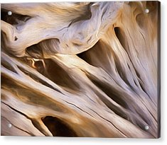Acrylic Print featuring the mixed media Spare Root 3 by Lynda Lehmann