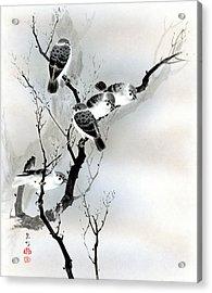 Sparrows Acrylic Print
