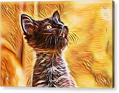 Special Long Neck Kitty Acrylic Print