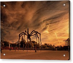 Spider Maman - Ottawa Acrylic Print