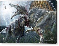 Spinosaurus Vs Tyrannosaurus Acrylic Print