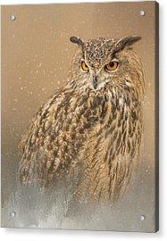 Spirit Of The Snow  Acrylic Print