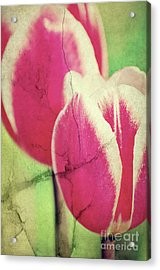 Spring Broken... II Acrylic Print