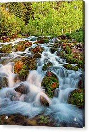 Spring Cascade Acrylic Print by Leland D Howard