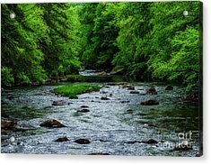Spring Fishing Along Cranberry River Acrylic Print