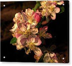 Spring Garland Acrylic Print