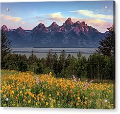 Spring In The Tetons Acrylic Print by Leland D Howard