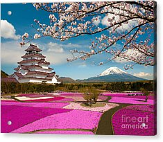 Spring Season In Japan Acrylic Print