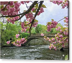 Spring Time In Windham  Acrylic Print