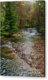Springtime Gauley River Headwaters Acrylic Print