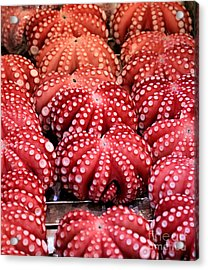 Squids At Food Market Acrylic Print by Henrik Winther Andersen