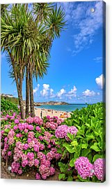 St Ives Cornwall - Summer Time Acrylic Print
