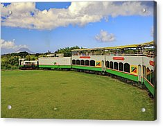 Acrylic Print featuring the photograph St Kitts Railway by Tony Murtagh