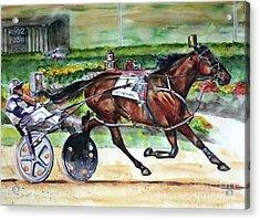 Standardbred Horse Acrylic Print