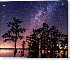 Acrylic Print featuring the photograph Star Bright by Andy Crawford