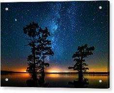 Acrylic Print featuring the photograph Star Gazers by Andy Crawford