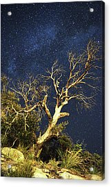 Stars Light Up Arizona Sky Acrylic Print
