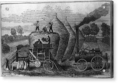 Steam Threshing Acrylic Print by Hulton Archive