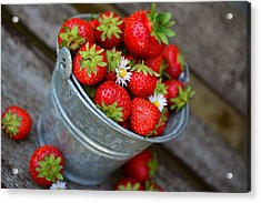 Strawberries And Daisies Acrylic Print
