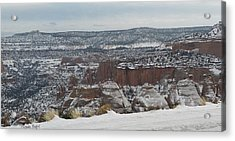 Striped Overview Acrylic Print