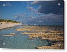Stromatolites On Stocking Island Acrylic Print