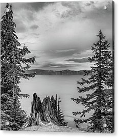 Stumped Acrylic Print by Joseph Smith