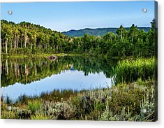 Acrylic Print featuring the photograph Summer Cove At Ivie Pond by TL Mair