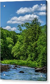 Summer Day On Williams River Acrylic Print