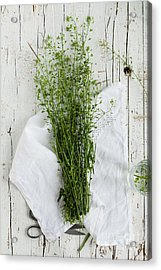 Summer Day With Wild Grass. Top View Acrylic Print