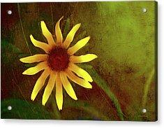 Summer Textures Acrylic Print
