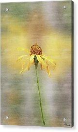 Summer's Reward In Digital Watercolor Acrylic Print