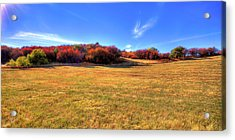 Acrylic Print featuring the photograph Sun On Magpie Forest by David Patterson