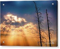 Sunbeams Acrylic Print