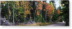 Sunday Drive Wide Panoramic View Acrylic Print by James BO Insogna