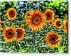 Sunflower Kaleidoscope  Acrylic Print