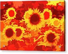 Sunflowers Field Of Fire Acrylic Print