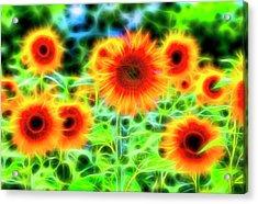 Sunflowers Of Dreams Acrylic Print