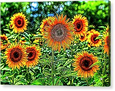 Sunflowers Stained Glass Acrylic Print