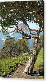 Sunny Day At Morro Bay Acrylic Print