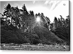 Acrylic Print featuring the photograph Sunrise by Jeni Gray