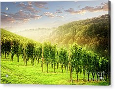 Acrylic Print featuring the photograph Sunrise Over Styria by Scott Kemper