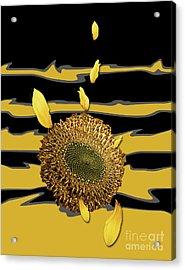 Sun's Flower Acrylic Print