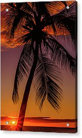 Sunset At The Palm Acrylic Print