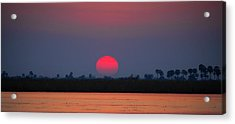 Sunset In Botswana Acrylic Print