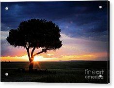 Sunset In The Masai Mara Acrylic Print
