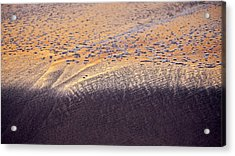Acrylic Print featuring the photograph Sunset In The Sand by Whitney Goodey