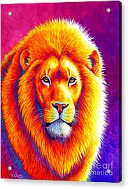 Sunset On The Savanna - African Lion Acrylic Print