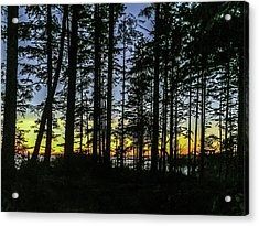 Acrylic Print featuring the photograph Sunset Thru The Trees by Ed Clark
